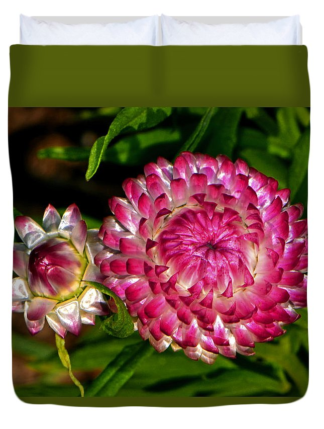Floral Duvet Cover featuring the photograph Grand Opening - Before And After 002 by George Bostian