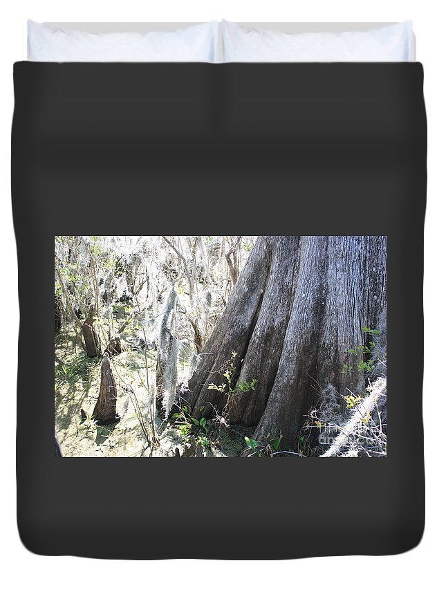 Old Cypress Duvet Cover featuring the photograph Grandfather Cypress by Carol Groenen