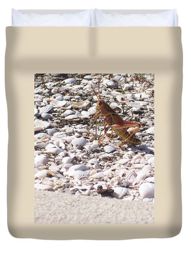 Florida Duvet Cover featuring the photograph Grasshopper by Chris Andruskiewicz
