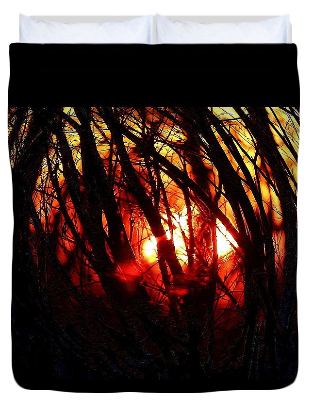 Woods Duvet Cover featuring the photograph Gravity Inversion At Sunset by Steve Doris