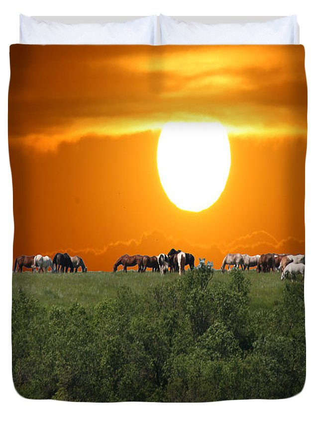 Horses Herd Sunset Grass Trees Nature Animals Scenery Sun Duvet Cover featuring the photograph Grazing by Andrea Lawrence