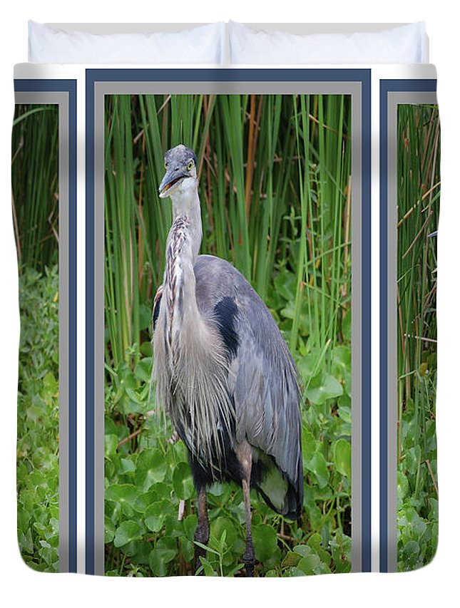 Bird Duvet Cover featuring the digital art Great Blue Heron Collage by DigiArt Diaries by Vicky B Fuller