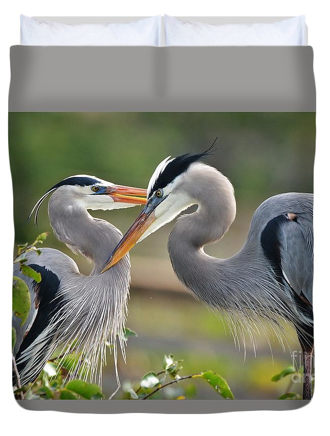 Great Blue Herons Duvet Cover featuring the photograph Great Blue Heron Pair 3 by Julie Adair