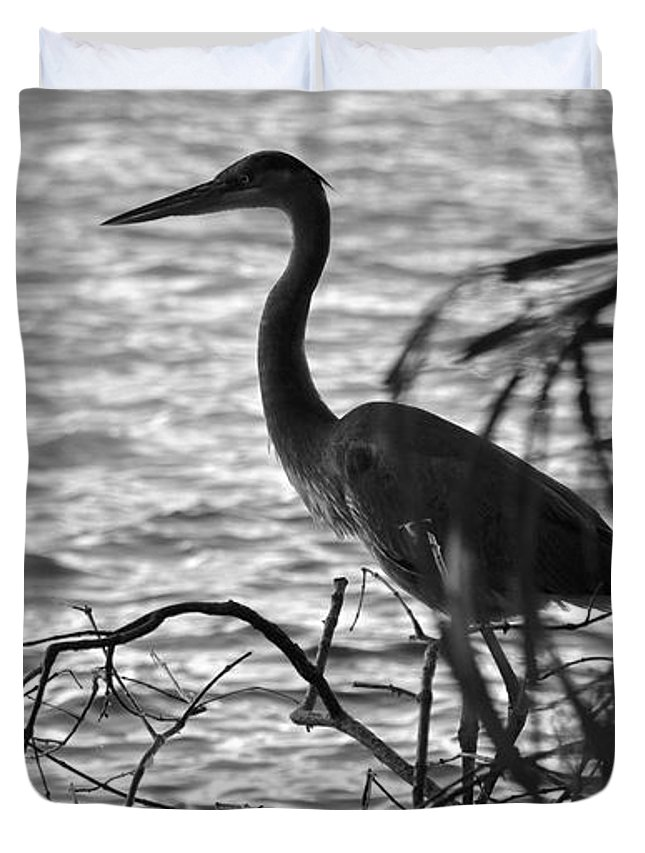 Black Duvet Cover featuring the photograph Great Blue In Black And White by Carol Bradley