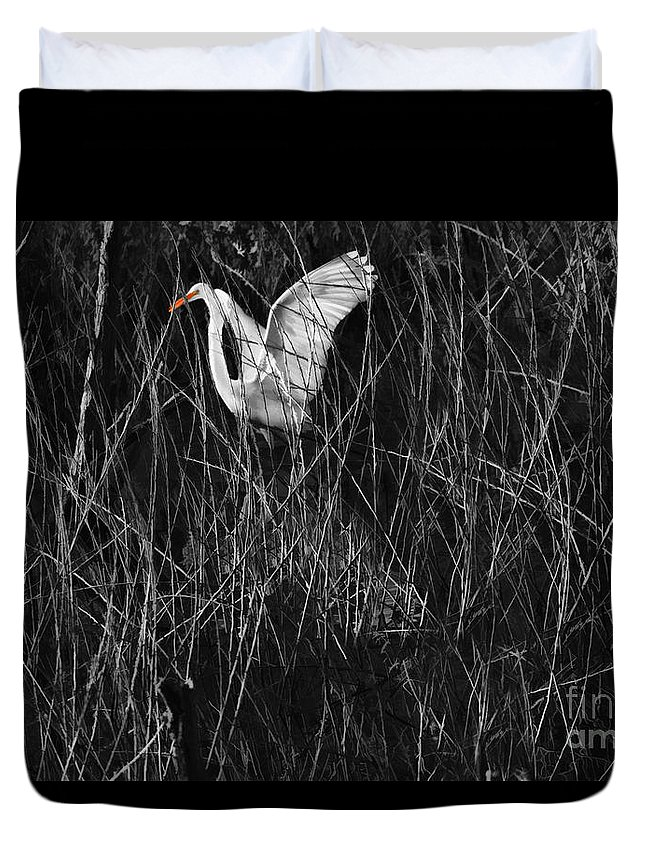 Great Egret Duvet Cover featuring the photograph Great Egret Inthe Marsh by Blake Richards
