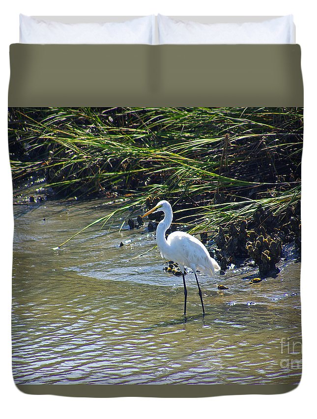 South Carolina Duvet Cover featuring the photograph Great Egret by Rich Walter