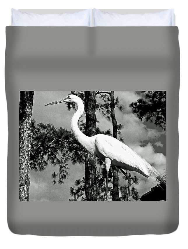 Animals Duvet Cover featuring the photograph Great Heron by Dale Chapel