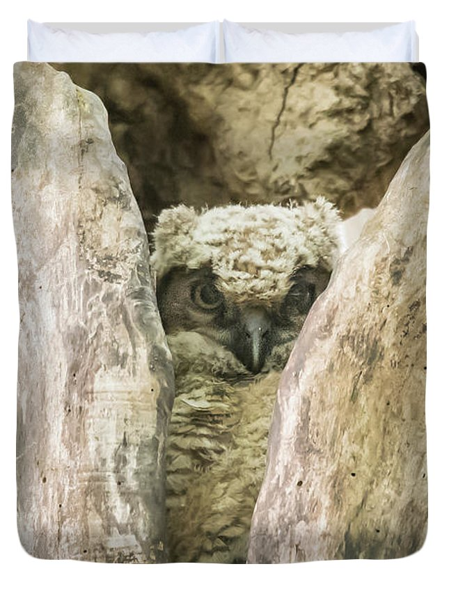 Great Horned Owl Duvet Cover featuring the photograph Great Horned Owl Chick by Robert Wrenn