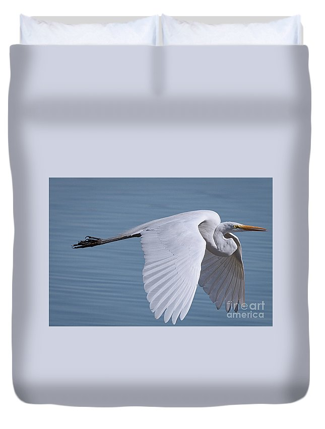 Canon 7d Duvet Cover featuring the photograph Great White Flight by David Cutts