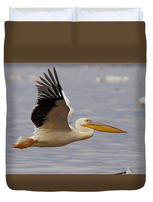 Africa Kenya Lakenakuru Wildlife Birds Pelican Duvet Cover featuring the photograph Great White Pelican In Flight by Quazi Ahmed Hussain