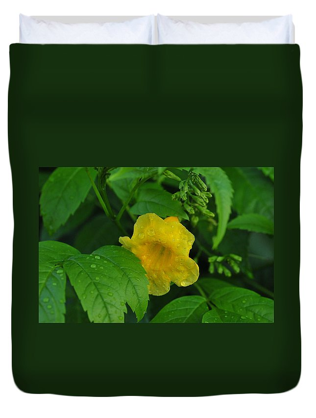 Flower Duvet Cover featuring the photograph Green And Yellow by Brigitta Diaz