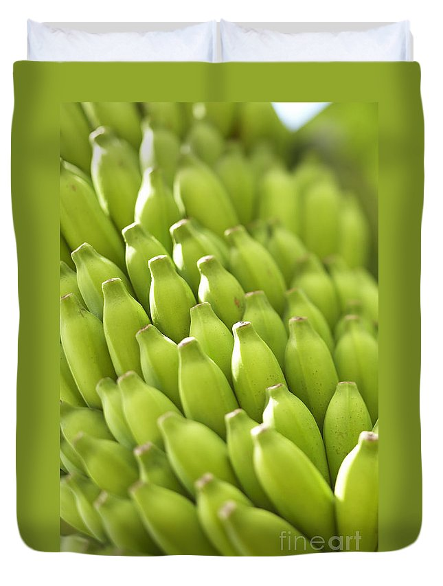 Agriculture Duvet Cover featuring the photograph Green Banana Bunch by Kyle Rothenborg - Printscapes