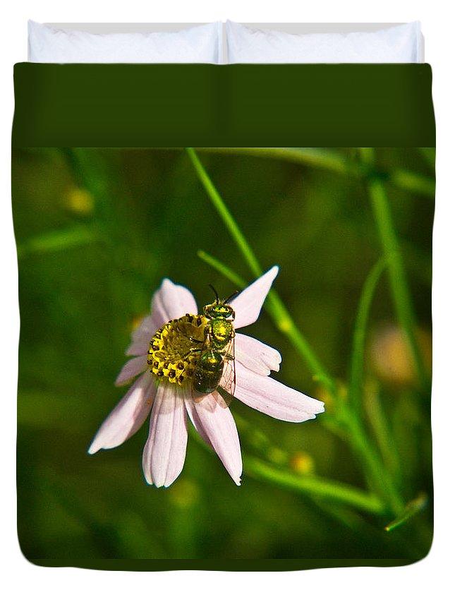 Green Duvet Cover featuring the photograph Green Bee Feeding by Douglas Barnett