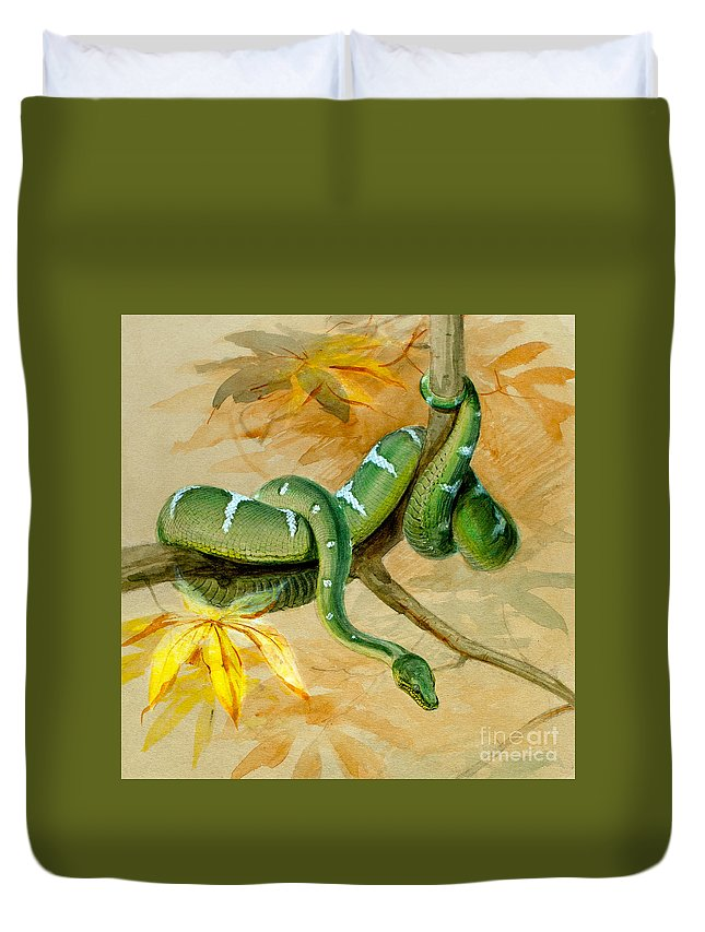 Snake Duvet Cover featuring the painting Green Boa by Joseph Wolf