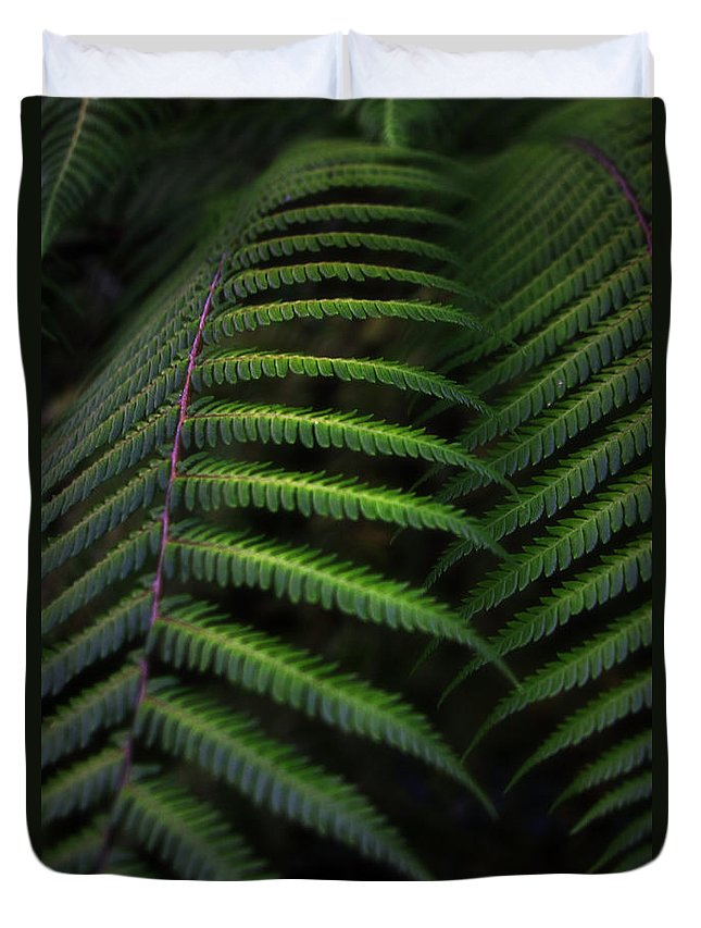 Kiwi Duvet Cover featuring the photograph Green Dream by Graham Hughes