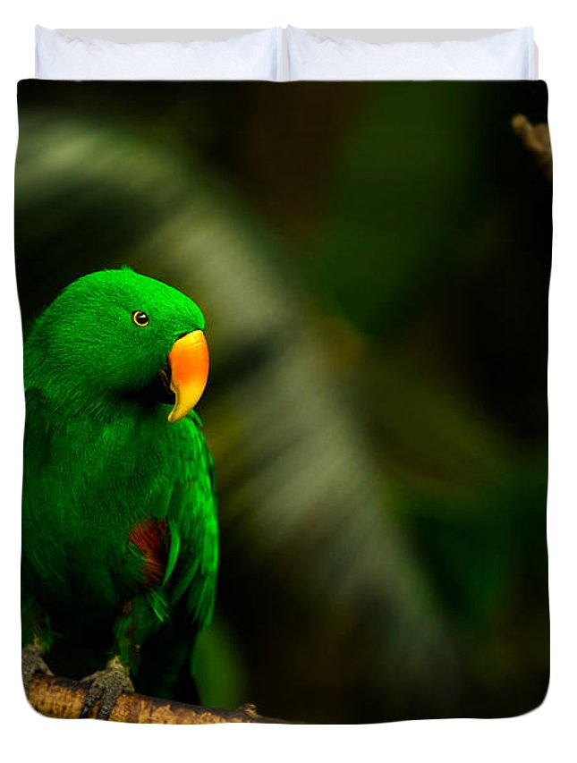 Bloedel Flora Bird Conservatory Duvet Cover featuring the photograph Green Eclectus Parrot Male by Peter v Quenter