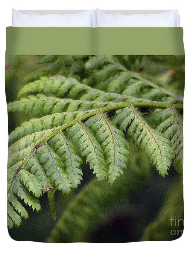 Fern Duvet Cover featuring the photograph Green Fern by Kim Tran