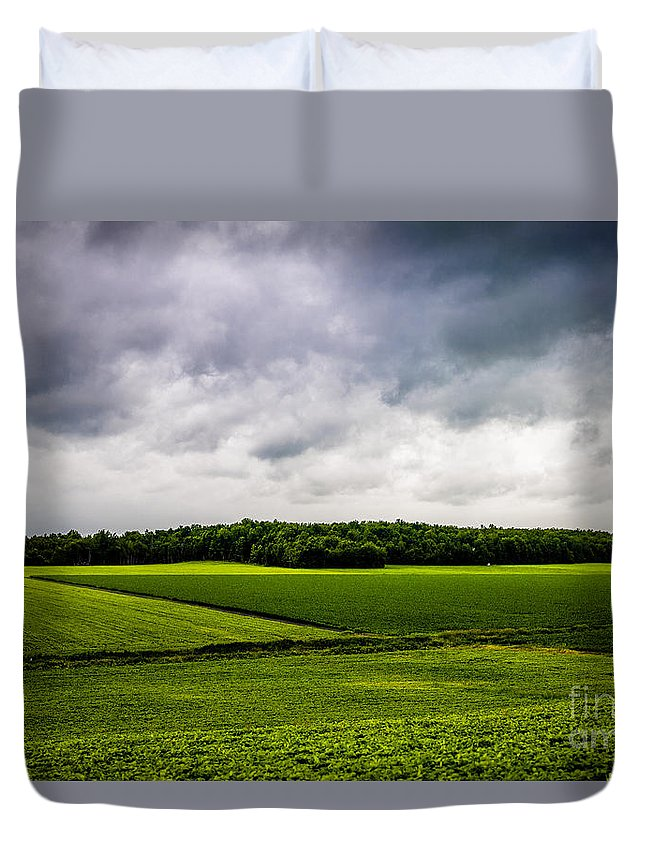 Green Fields Duvet Cover featuring the photograph Green Fields by M G Whittingham