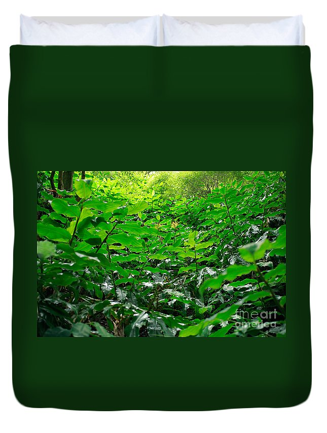 Deep Forest Duvet Cover featuring the photograph Green Foliage by Gaspar Avila