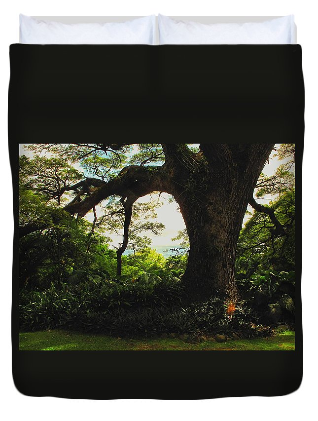 Tropical Duvet Cover featuring the photograph Green Giant by Ian MacDonald