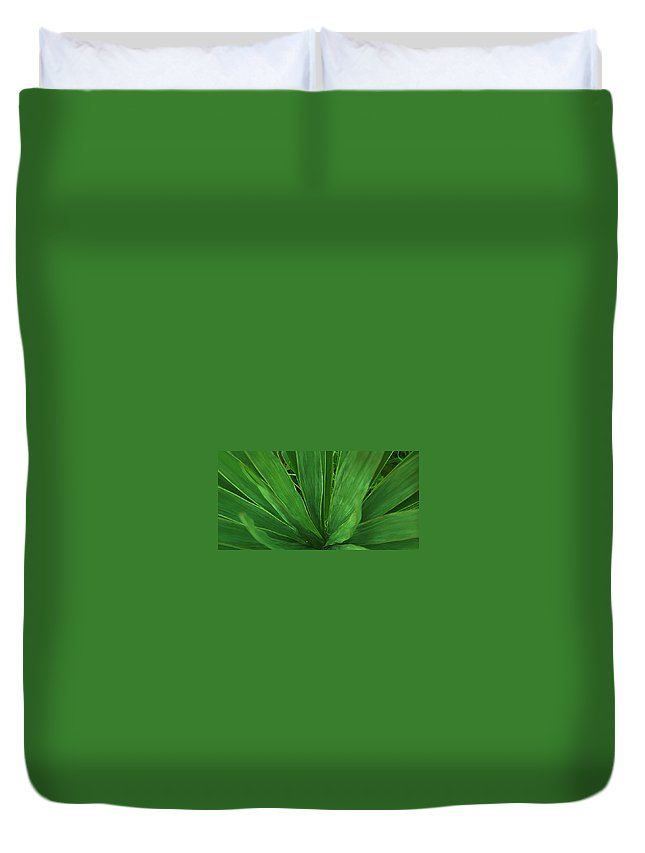 Green Plant Duvet Cover featuring the photograph Green Glow by Linda Sannuti