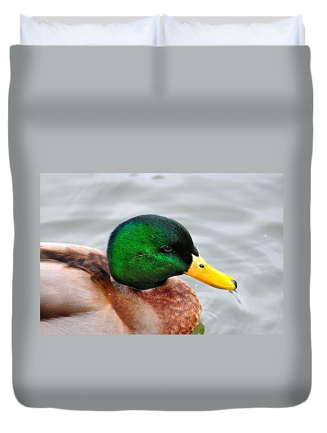 Duvet Cover featuring the photograph Green Head by Todd Hostetter