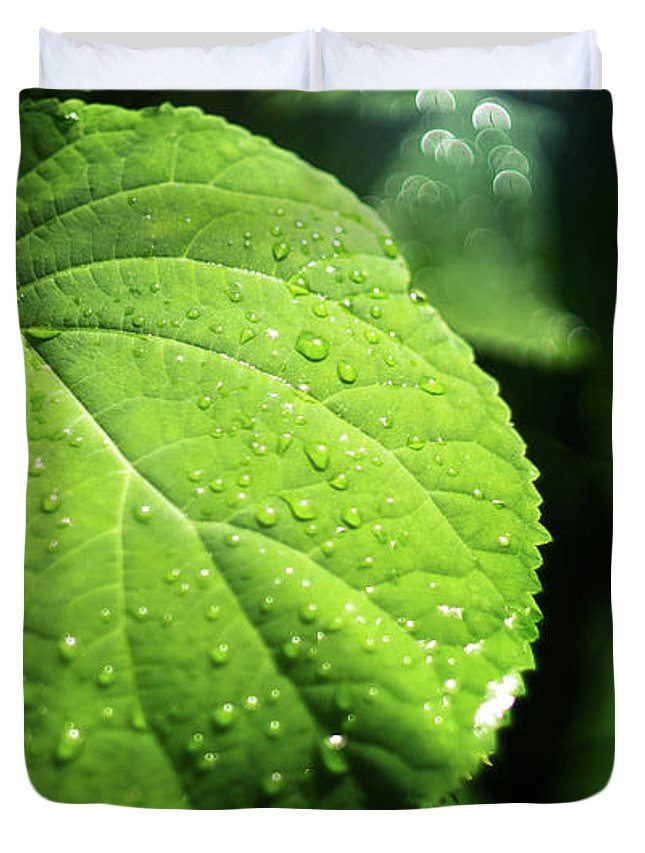Green Duvet Cover featuring the photograph Green Leaf by Evgeniy Anikeev