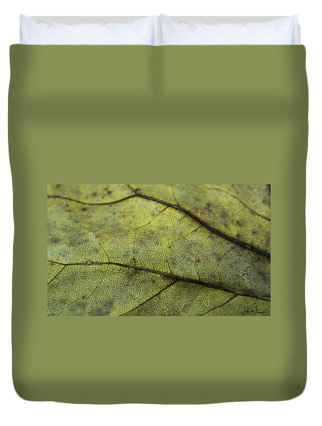 Nature Duvet Cover featuring the photograph Green Leaf by Linda Sannuti