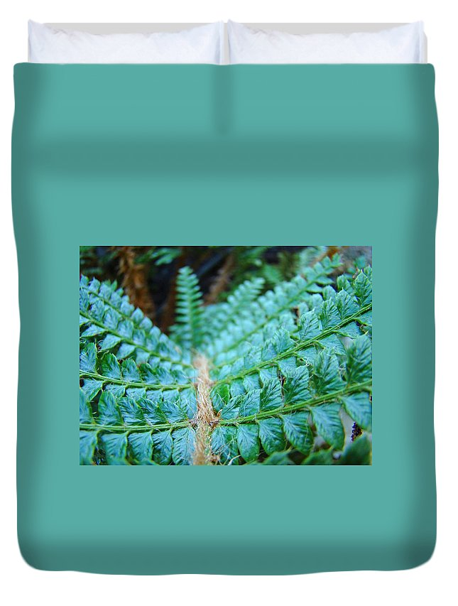 Fern Duvet Cover featuring the photograph Green Nature Forest Fern Art Print Baslee Troutman by Baslee Troutman
