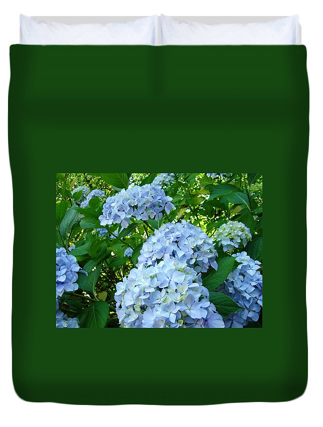 Nature Duvet Cover featuring the photograph Green Nature Landscape Art Prints Blue Hydrangeas Flowers by Baslee Troutman