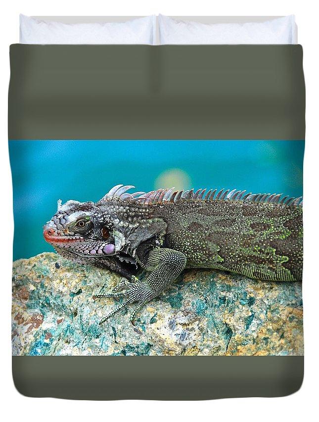 Iguana Duvet Cover featuring the photograph Green Phantom by David Coleman