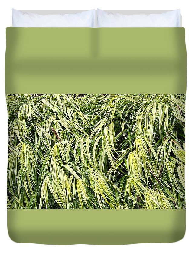Plants Duvet Cover featuring the photograph Green Plants by Michelle Miron-Rebbe