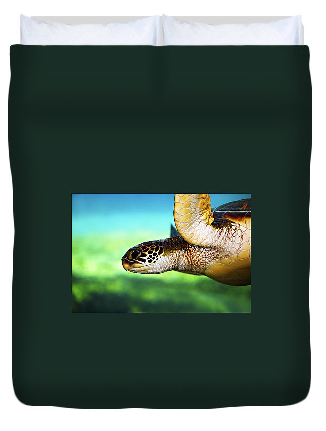 Green Duvet Cover featuring the photograph Green Sea Turtle by Marilyn Hunt