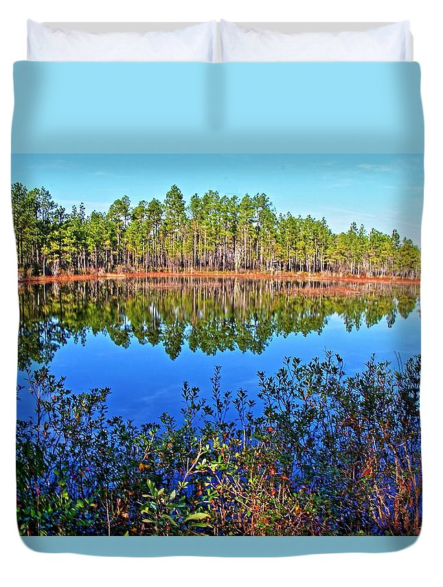 Pond Duvet Cover featuring the photograph Green Swamp In December by Rand Wall