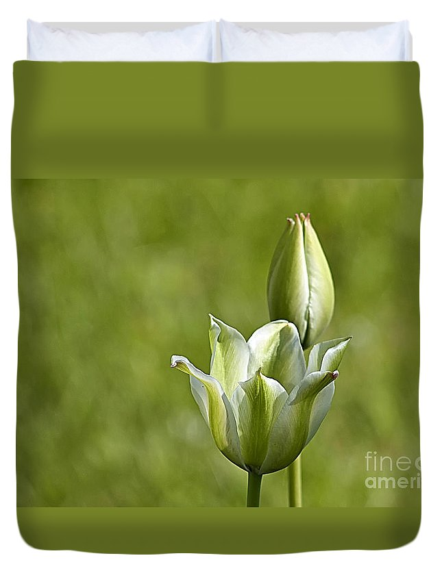 Flower Duvet Cover featuring the photograph Green Tulips by Teresa Zieba