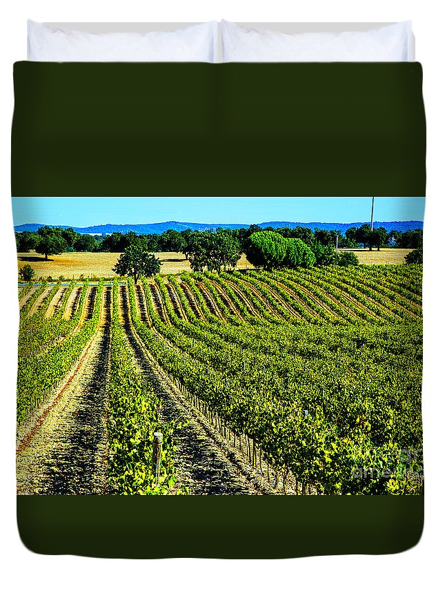 Portugal Vineyards Herdade Vineyards Duvet Cover featuring the photograph Green Vineyards by Rick Bragan