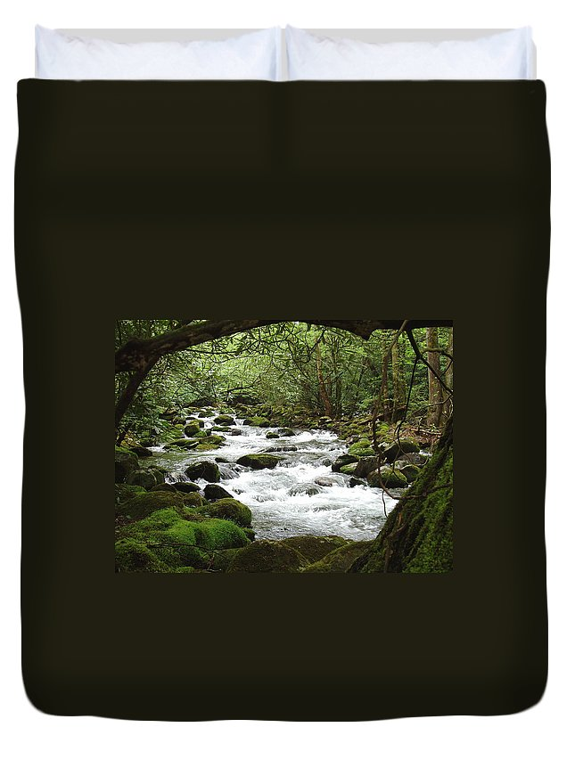 Smoky Mountains Duvet Cover featuring the photograph Greenbrier River Scene 2 by Nancy Mueller