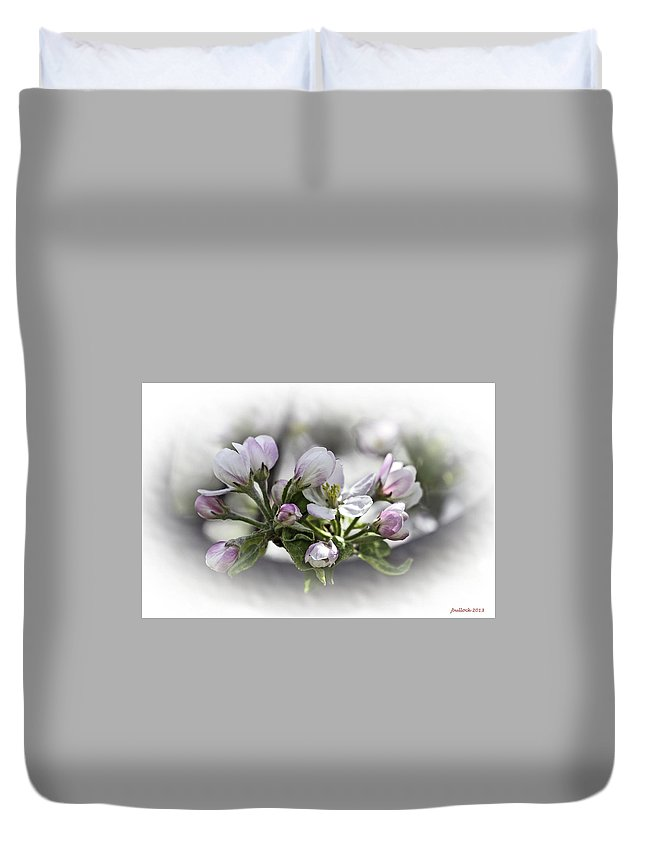 Apple Blossoms Duvet Cover featuring the photograph greeting card - Apple Blossoms by Jerrie Bullock