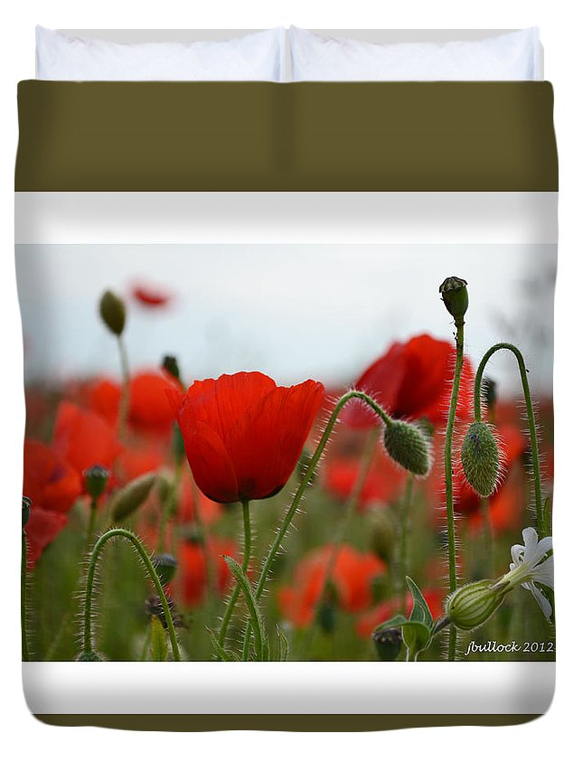 Red Flowers. Red Poppies Duvet Cover featuring the photograph Greeting Card - Poppies In France by Jerrie Bullock