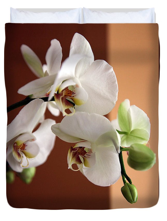 Orchid Duvet Cover featuring the photograph Greeting The Day by Amanda Barcon