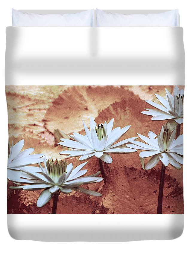 Flowers Duvet Cover featuring the photograph Greeting The Day by Holly Kempe