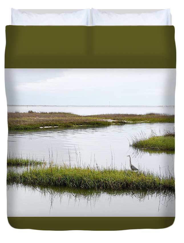 Avian Duvet Cover featuring the photograph Grey Heron #1 by Tim Bond