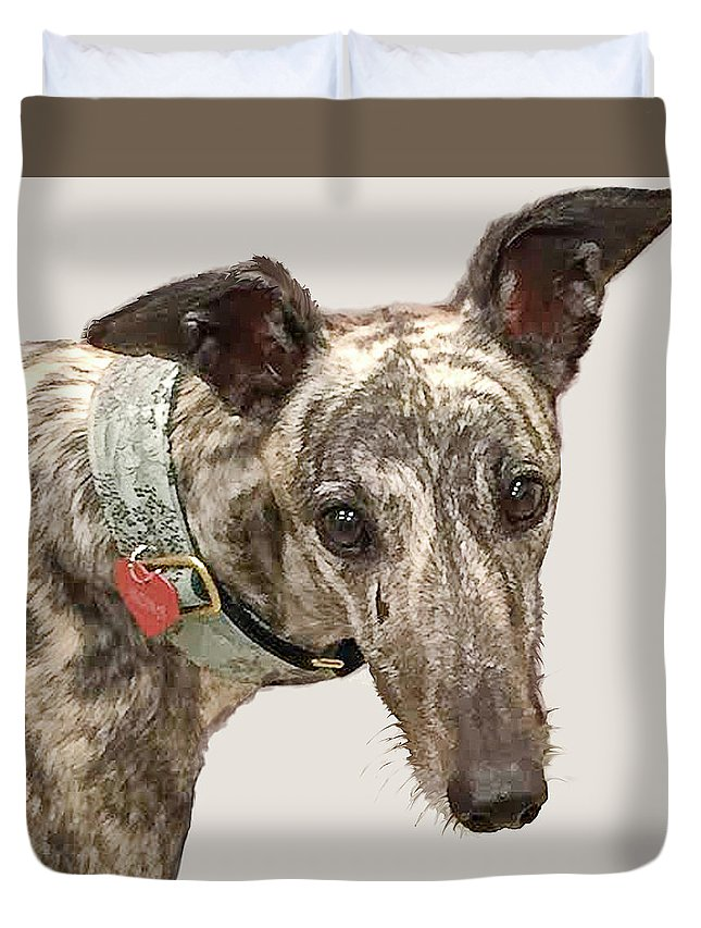 Greyhound Duvet Cover featuring the painting Greyhound 2 by Jackie Jacobson