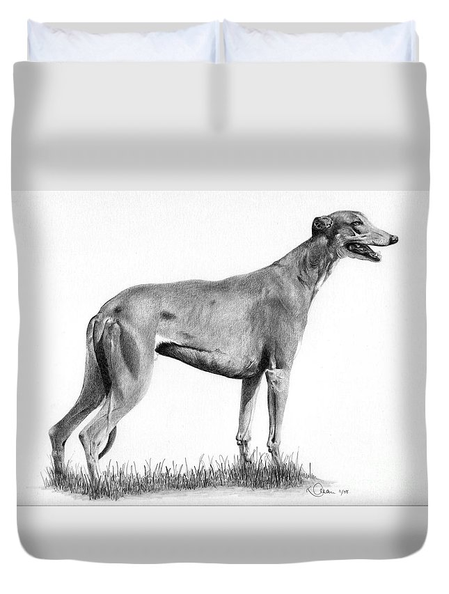 Dog Duvet Cover featuring the drawing Greyhound by Karen Townsend