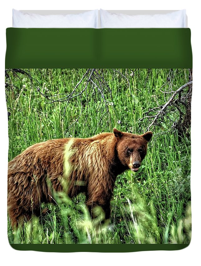 Animal Duvet Cover featuring the photograph Grizzly Bear 2 by John Trommer