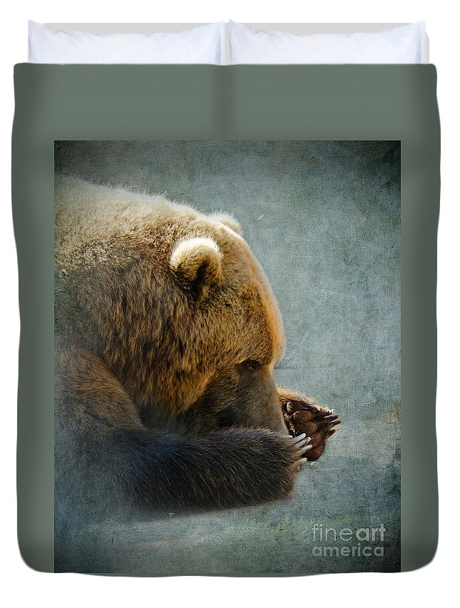 Bear Duvet Cover featuring the photograph Grizzly Bear Lying Down by Betty LaRue