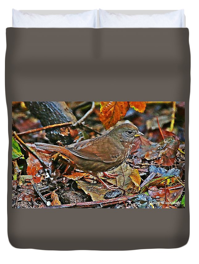Oregon Duvet Cover featuring the photograph Grounded by Steve Warnstaff