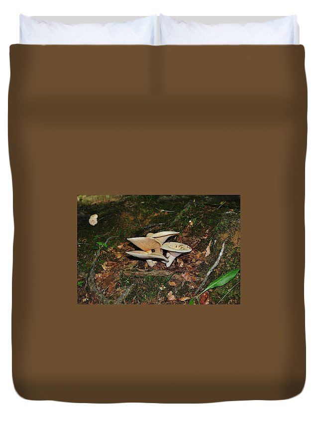 Groupy Mush Duvet Cover featuring the photograph Groupy Mush by Wanda Gancarz