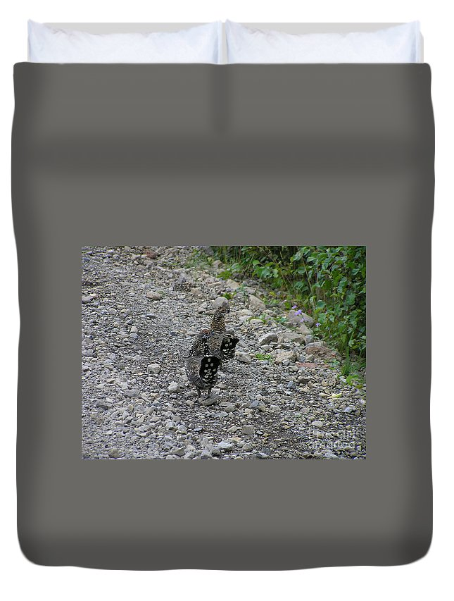 Grouse Duvet Cover featuring the photograph Grouse Pair by Louise Magno
