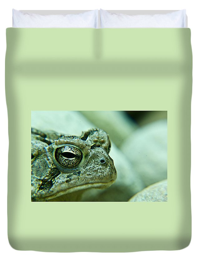 Toad Duvet Cover featuring the photograph Grumpy Toad by Douglas Barnett